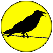 FeenPhone Logo