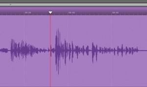 Voice wave